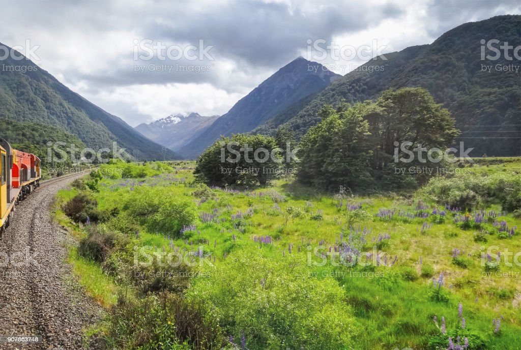 Tranzalpine Railway and train on South Island New Zealand stock photo