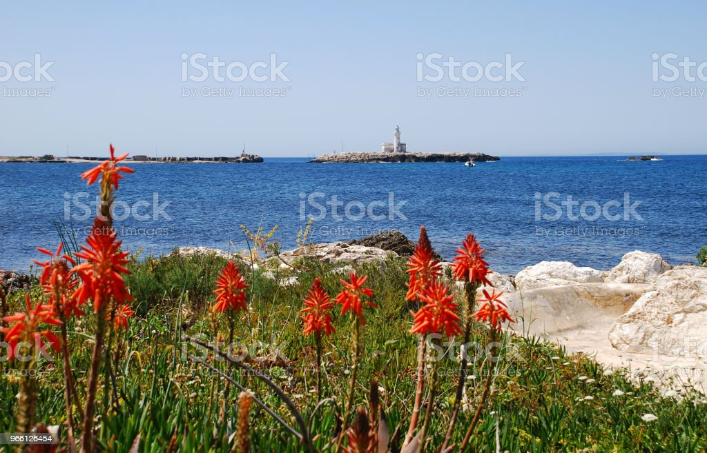 Trapani Sicilia - Royalty-free Coastline Stock Photo