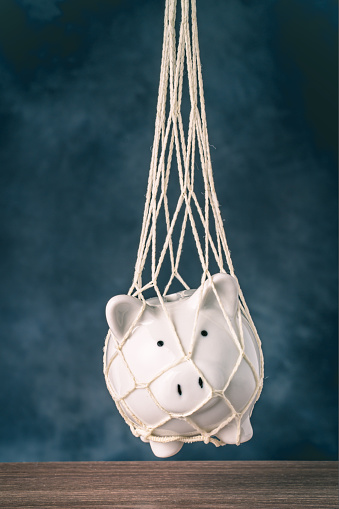Trapped piggy bank in net. Avoid debt traps and speculation. Savings and retirement financial scams