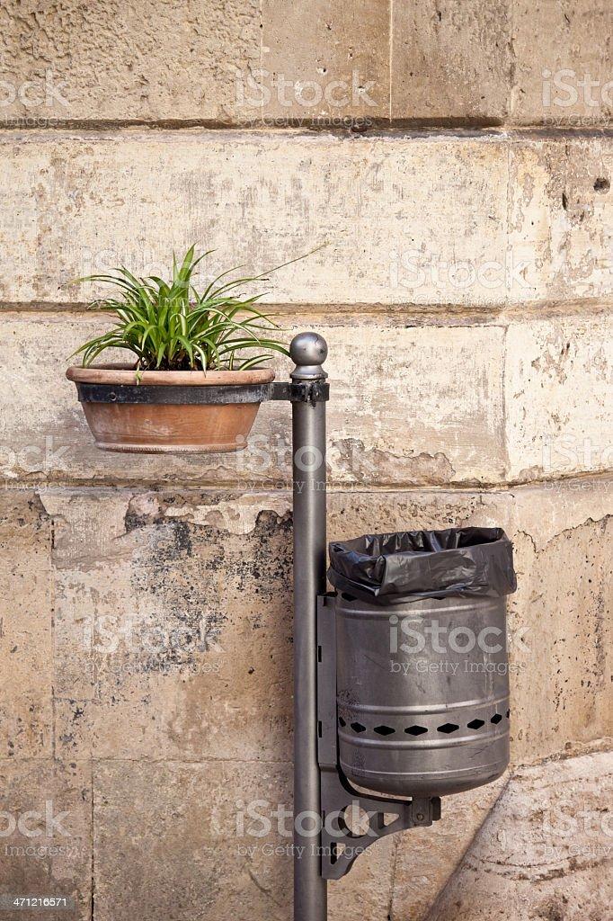 Trash bin and plant royalty-free stock photo