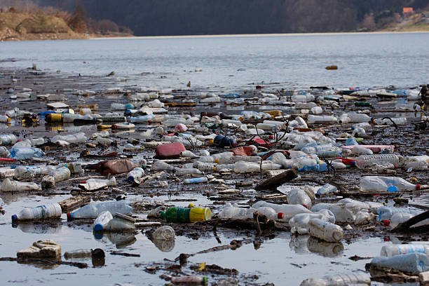 trash in the river - pollution stock photos and pictures
