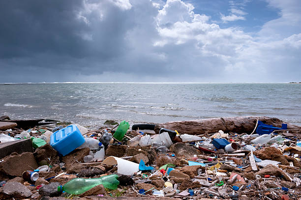 trash on the beach - pollution stock pictures, royalty-free photos & images