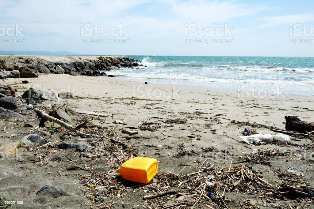 Trash on the beach royalty-free stock photo