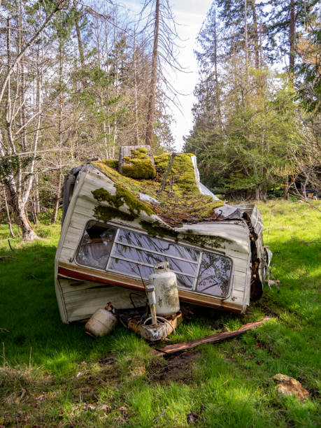 trashed trailer - naturediver stock pictures, royalty-free photos & images