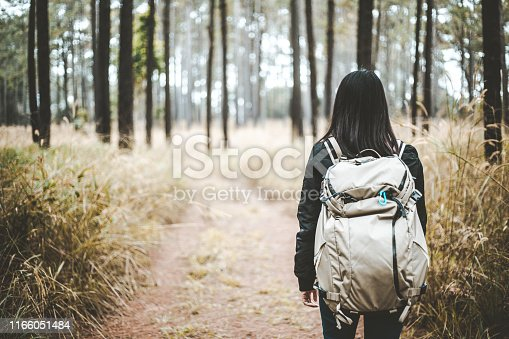 Young asian travel backpacker woman with backpack walking in tropical pine forest at Phetchabun, Thailand