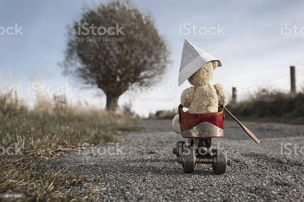 Travel Bear stock photo