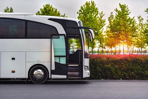 travel company bus