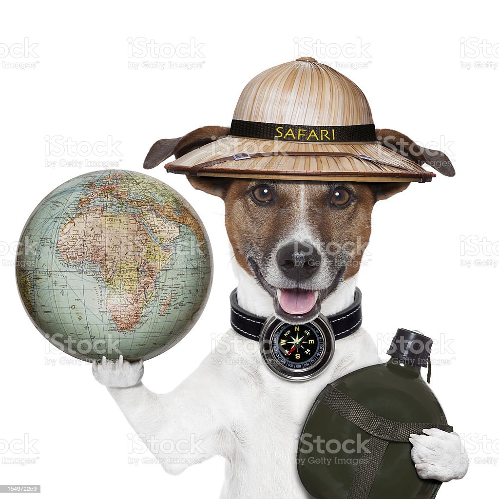 Travel Globe Compass Dog Safari Explorer Stock Photo