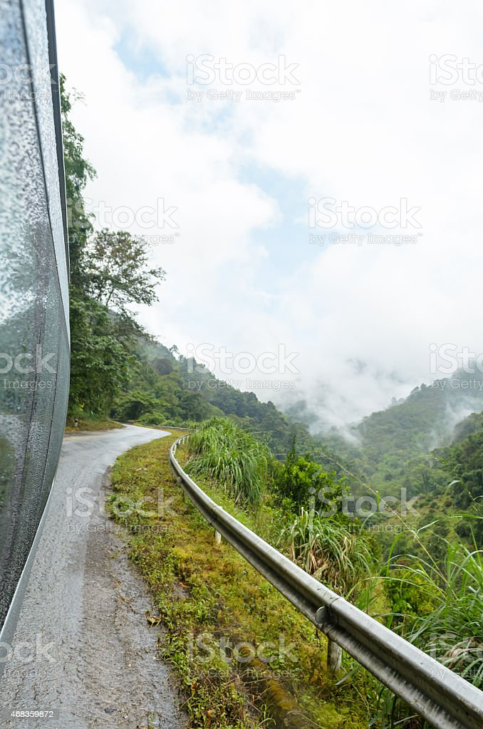 Travel in forest royalty-free stock photo