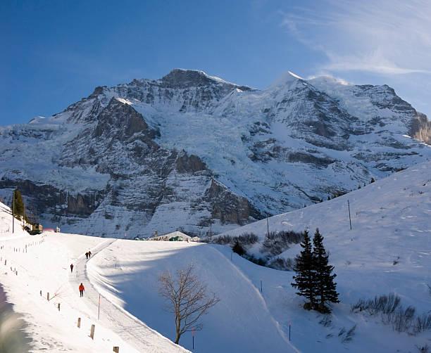 Travel jungfrau and sliberhorn picture id172783584?b=1&k=6&m=172783584&s=612x612&w=0&h=exjpgzuuzijnb cjxyjs4cojm7rspbpdazyi43yrq7s=