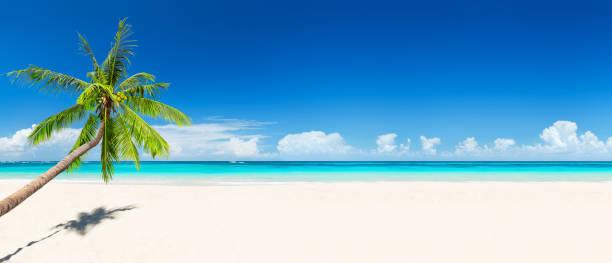 concepto de fondo de vacaciones de verano de viaje. - playa fotografías e imágenes de stock