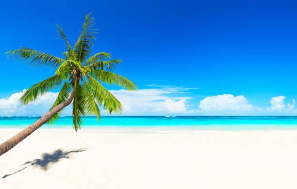 Travel summer holiday background concept. stock photo