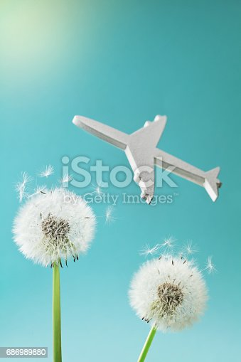 istock Travel, summer vacation, aviation and air flight concept. Dandelion flowers and flying airplane silhouette in sky. 686989880