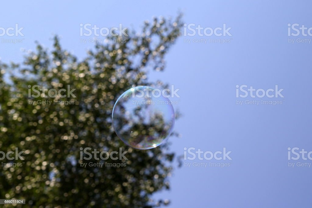 Travel to Arkaim, Russia. Russian birch tree and a soap bubble. stock photo