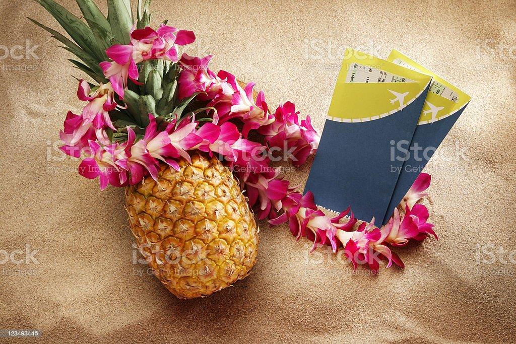 travel vacation to hawaii royalty-free stock photo