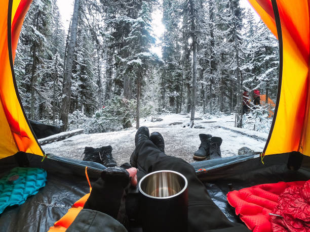 Traveler camping with hand holding cup in a tent with snow in pine forest at national park stock photo