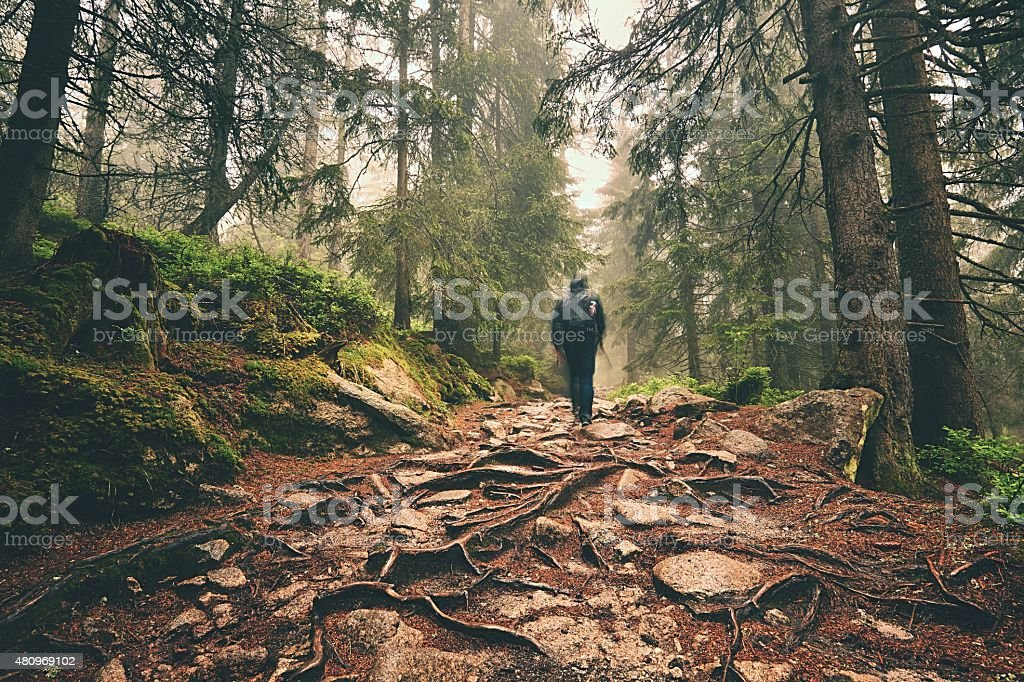 Traveler in mountains stock photo