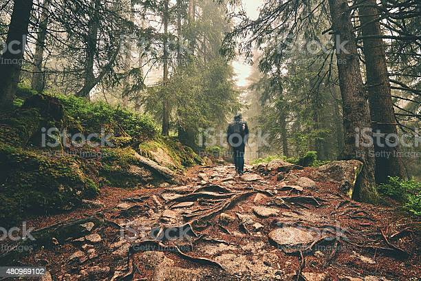 Photo of Traveler in mountains
