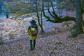 istock Traveler Looks at Landscape 1073229290