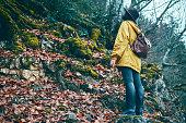 istock Traveler Looks at Landscape 1073229966