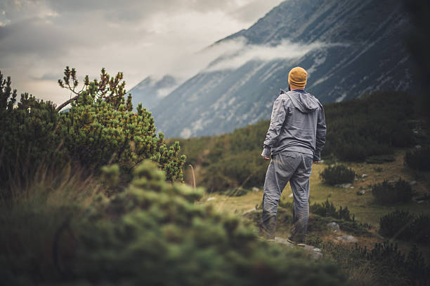 Traveler looks on valley in mountains stock photo