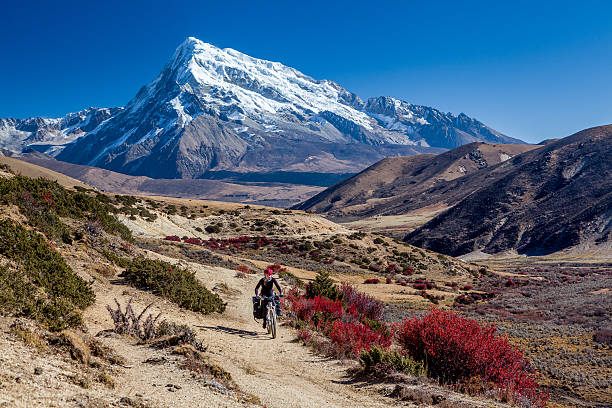 Traveler on mountain bike cycling trail in mountains stock photo