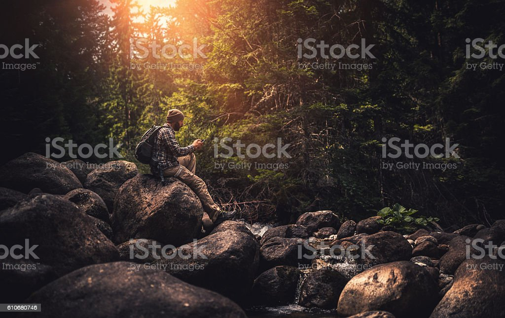 Traveler using a smart phone in the forest stock photo