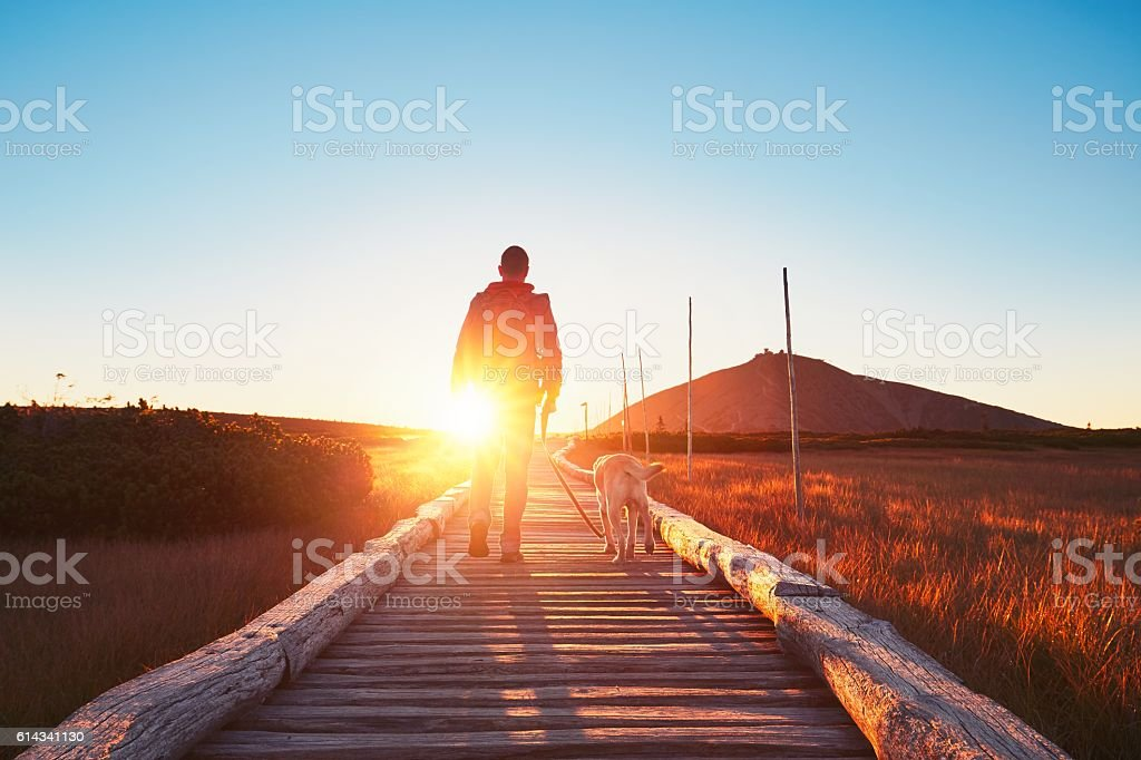 Traveler with dog in mountains stock photo