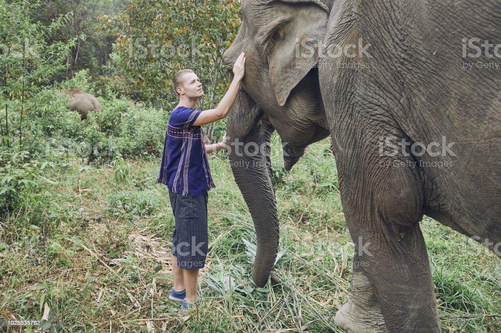Traveler with elephant stock photo