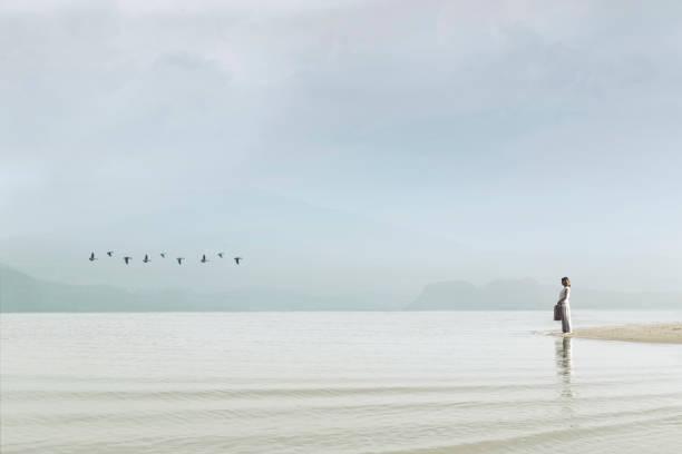 traveler woman looking at uncontaminated nature - donna valigia solitudine foto e immagini stock