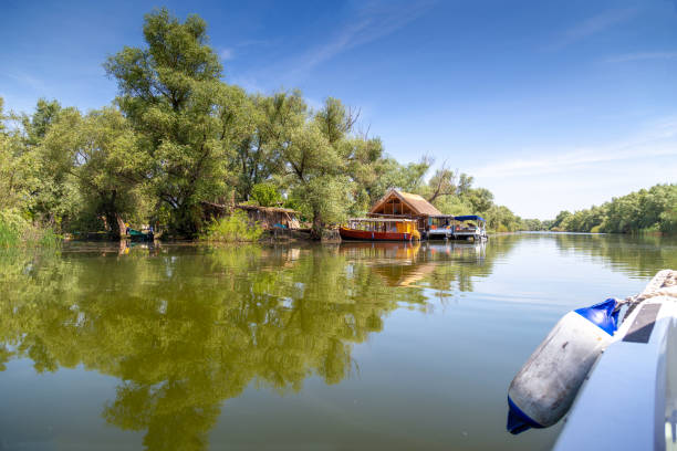 Traveling by boat through the Danube Delta stock photo