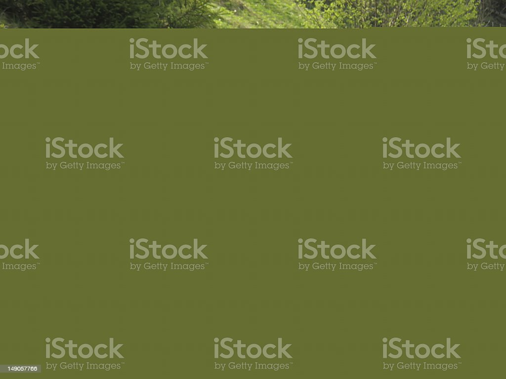traveling people reading map on mountains royalty-free stock photo