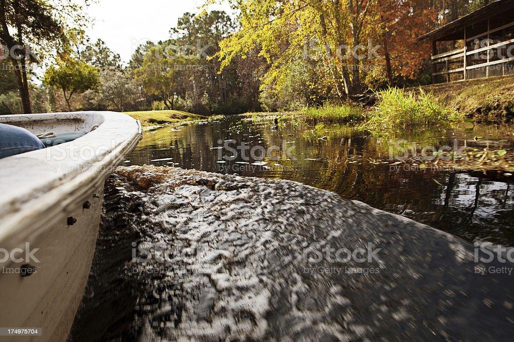 traveling through the Okefenokee swamp royalty-free stock photo