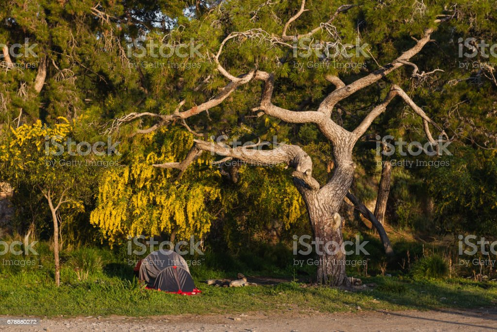 Traveling with tent in beautiful nature location royalty-free stock photo