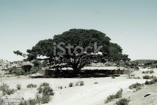 istock Travelling around the vilages near Asmara and Massawa 1222368302