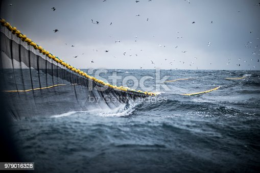 Trawl industrial fishing net