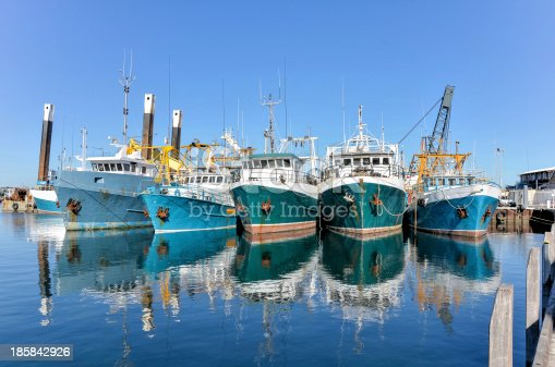 Trawlers Moored at Fremantle Fishing Harbour on a Clear Winter Day, Western Australia