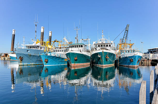 trawlers in a harbour - fishing boat stock pictures, royalty-free photos & images