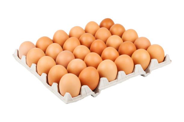 ablage von eiern - eierverpackung stock-fotos und bilder