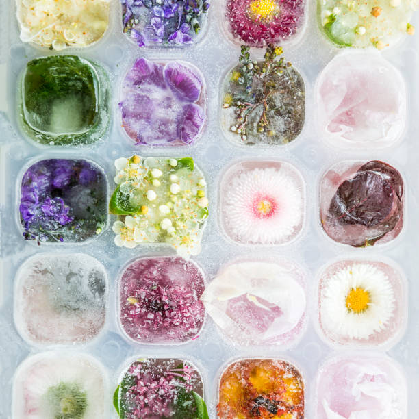 Tray with frozen flowers in ice cubes picture id692598520?b=1&k=6&m=692598520&s=612x612&w=0&h=pogfxdz9 dgr6s nvord9i50vbibc7lgxrp jegzlxo=