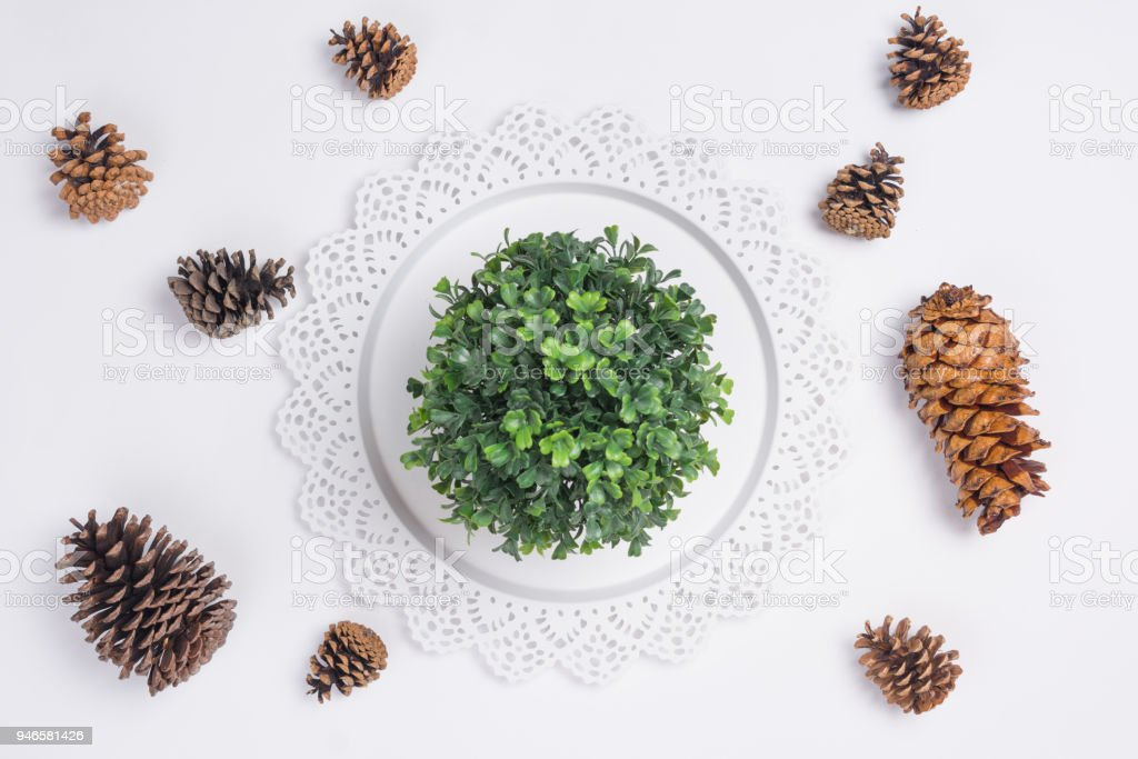 Tray with Pine Cones and Plant Flat Lay Top View stock photo