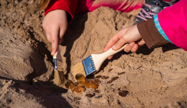 Treasure hunting. Kids playing archaeologists, unearthing the old piggy bank discovered hidden in the sand on a beach. Treasure hunting: piggy bank has hidden underground archaeology stock pictures, royalty-free photos & images