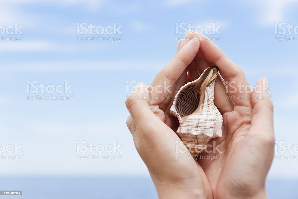 Treasure in woman hands royalty-free stock photo