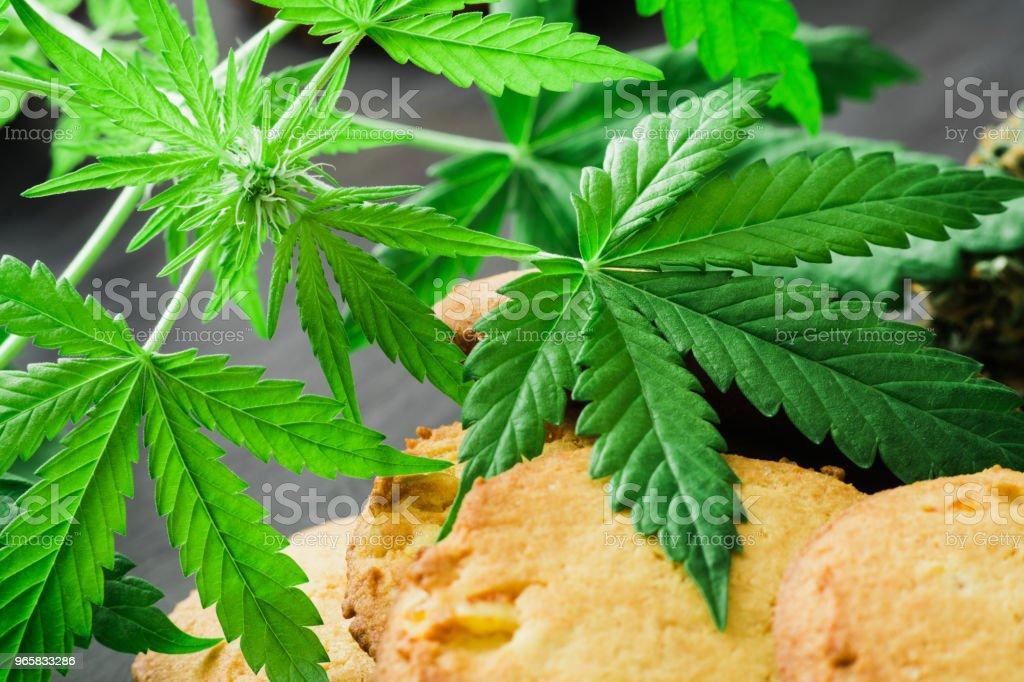 Behandeling van medische marihuana bladeren van cannabis met Cookies cannabis en toppen van marihuana - Royalty-free Biologisch Stockfoto