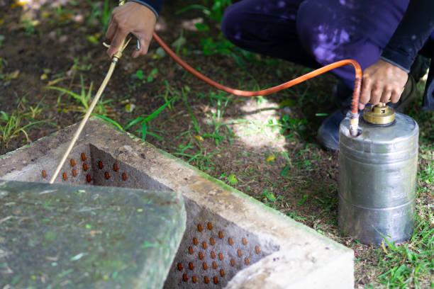 Treatment, Pest Control, Fumigation