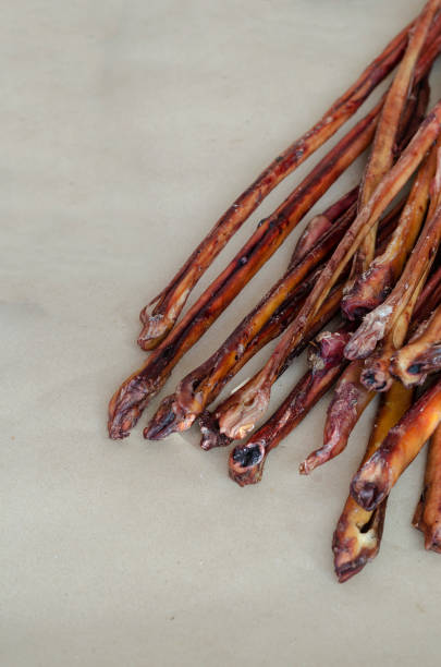 Treats for dogs. Dried Beef pizzle. Treats for dogs. Dried Beef pizzle. Bully Sticks Large Size.  Dental Dog Treats. Pets. animals with big penis stock pictures, royalty-free photos & images