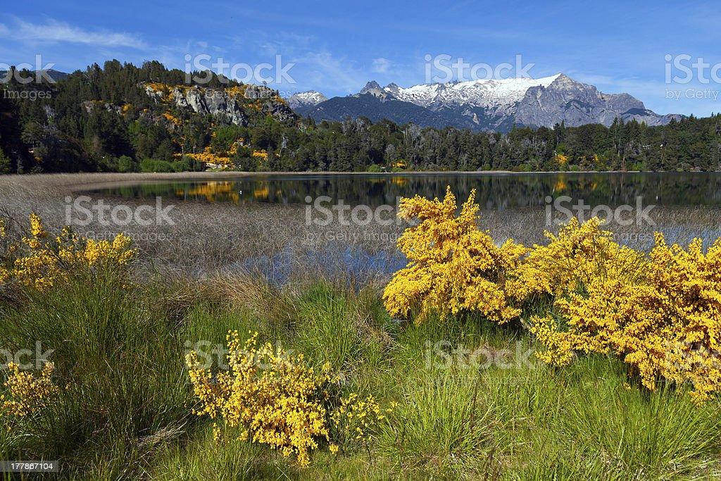 Trebol lagoon, Patagonia, Argentina royalty-free stock photo