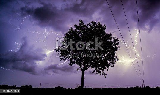858837068istockphoto Tree against a stormy sky 824629864