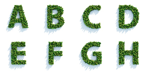 Highly detailed tree alphabet on a white background. Morning light with projected shadows, which can be multiplied in an editing software for an easy composite over your own background.