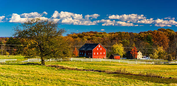 Tree and barn on the battlefield at Gettysburg, Pennsylvania. stock photo